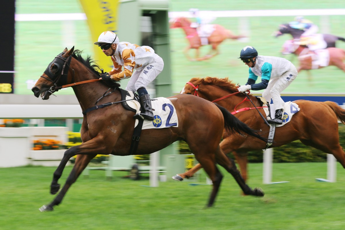 Wishful Thinker wins at Sha Tin earlier this month. Photos: Kenneth Chan