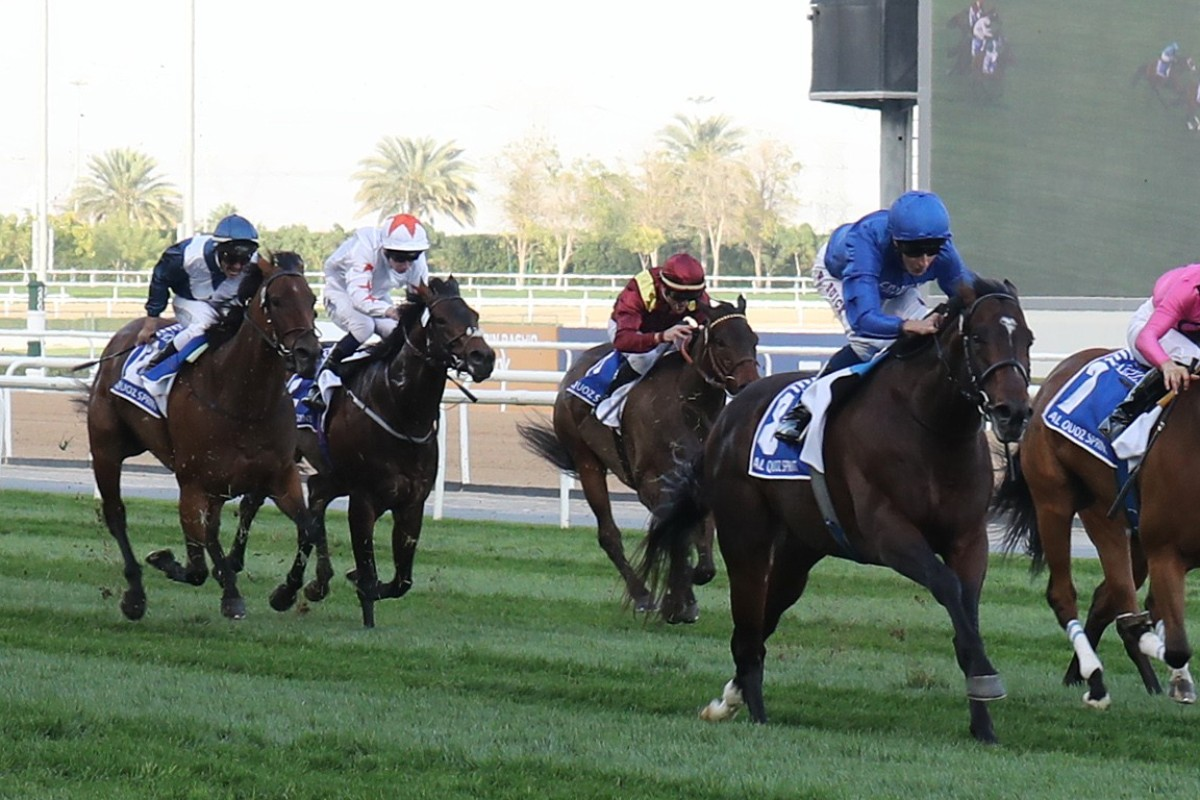 Viddora (left) runs fourth behind Blue Point in the Al Quoz Sprint. Photo: Kenneth Chan