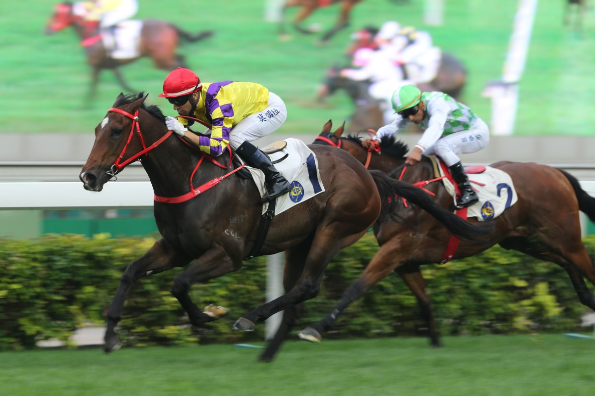Champion's Way makes it four wins in a row. Photo: Kenneth Chan