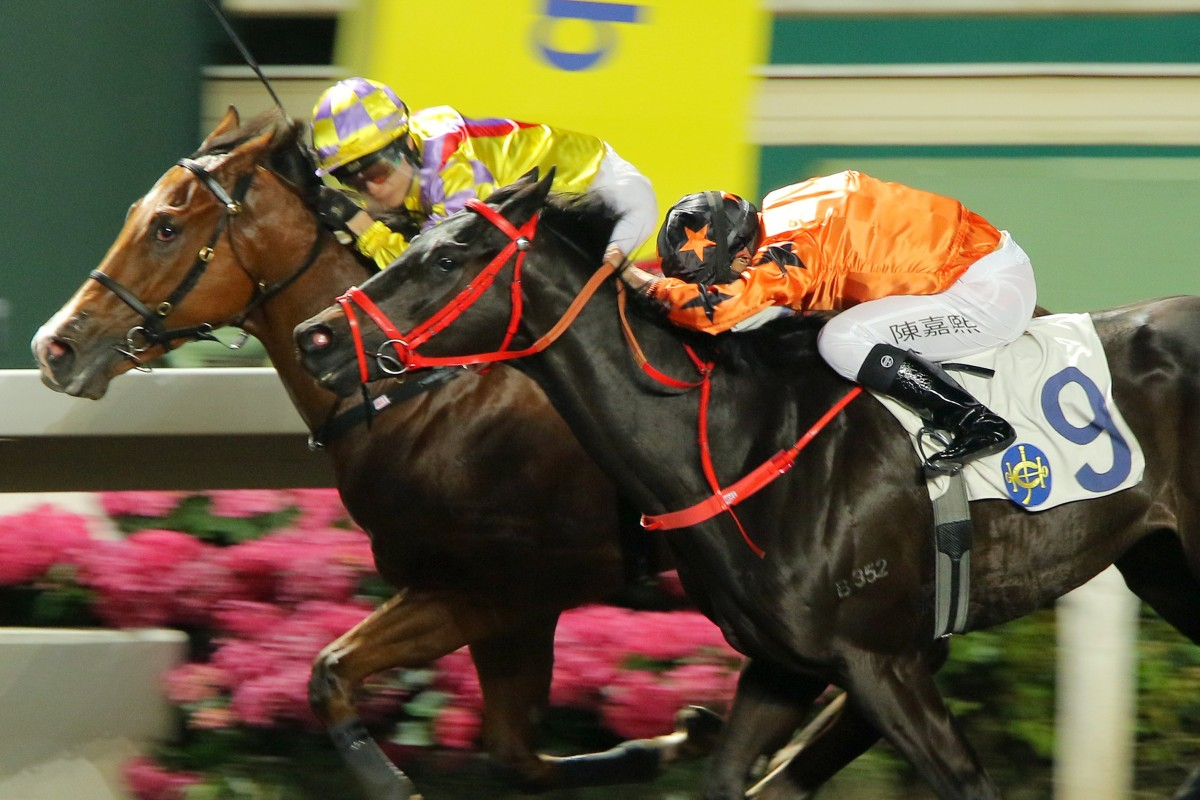 Winner Supreme (left) holds off Simply Big at Sha Tin on Wednesday night. Photos: Kenneth Chan
