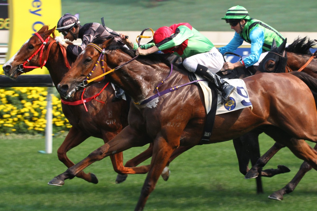 War Lord wins at Sha Tin with Diamond Brilliant (Regan Bayliss) in second ahead of the unlucky Silver Fig (Martin Harley). Photo: Kenneth Chan