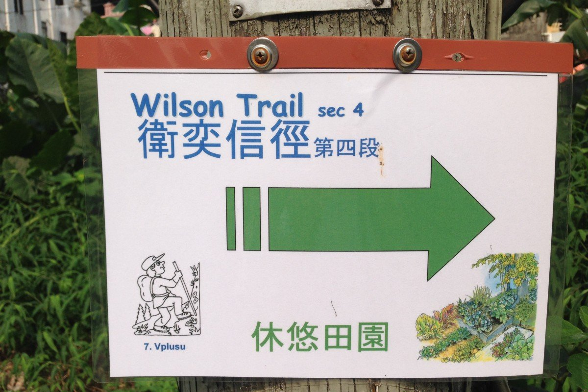 The Wilson Trail is one of many official trails in Hong Kong and one of the four major routes, but there are countless 'unnamed' paths are at risk. Photo: Joyee Chan