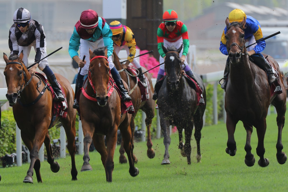 Santa Ana Lane (right) runs fourth to Beat The Clock in the Group One Chairman's Sprint Prize. Photo: Kenneth Chan