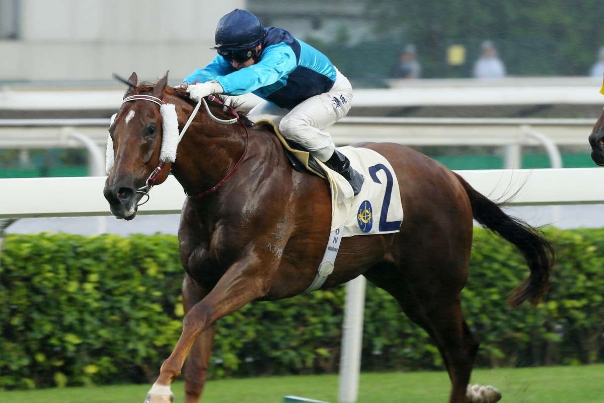 Sunny Boy holds off all challengers to win at Sha Tin on Sunday. Photos: Kenneth Chan