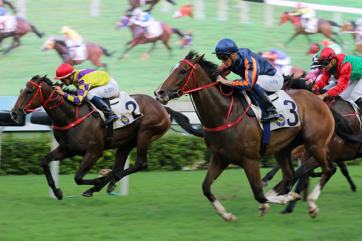 Chad Schofield and Red Warrior (right) race over the top of Joao Moreira and Champion's Way (left) to win at Sha Tin on Saturday. Photos: Kenneth Chan