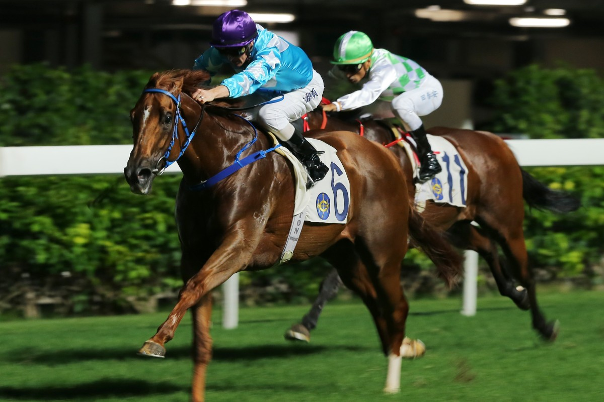 Yee Cheong Baby makes it two from two at Happy Valley on Wednesday night. Photos: Kenneth Chan