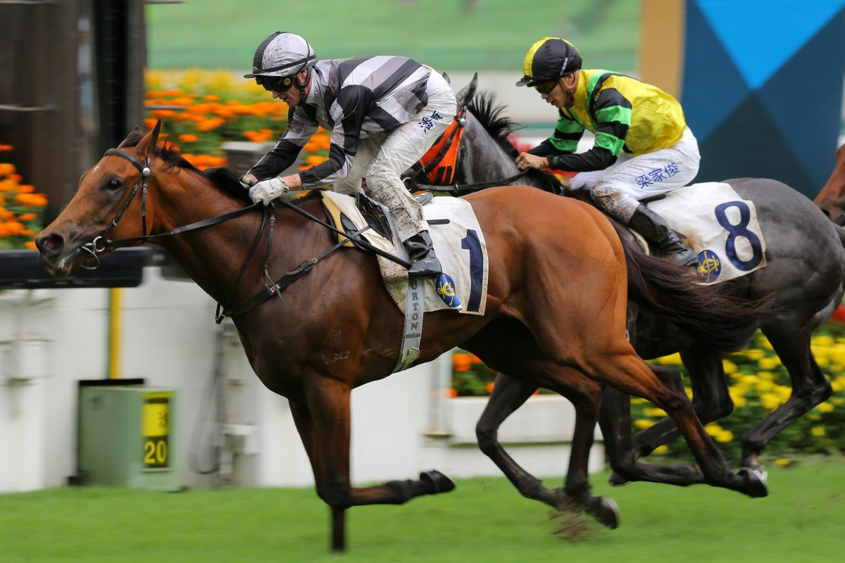 Little Giant lands his first Group success at Sha Tin on Sunday. Photos: Kenneth Chan
