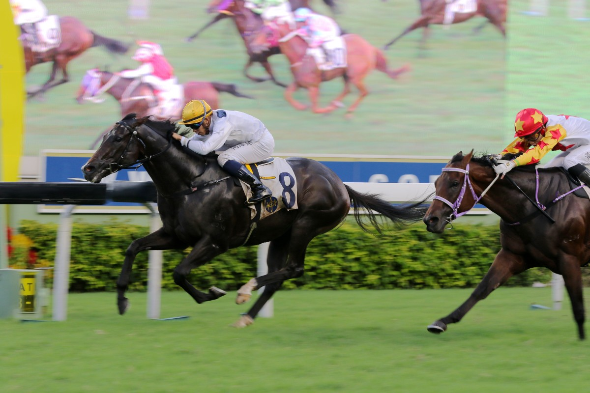 Vincent Ho boots Golden Sixty to victory at Sha Tin on Saturday. Photo: Kenneth Chan