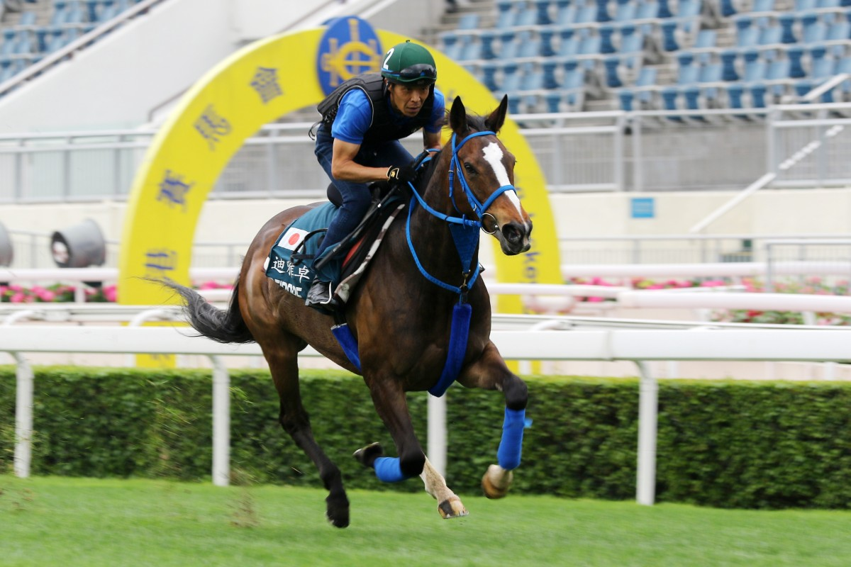 Deirdre gallops at Sha Tin in April. Photos: Kenneth Chan