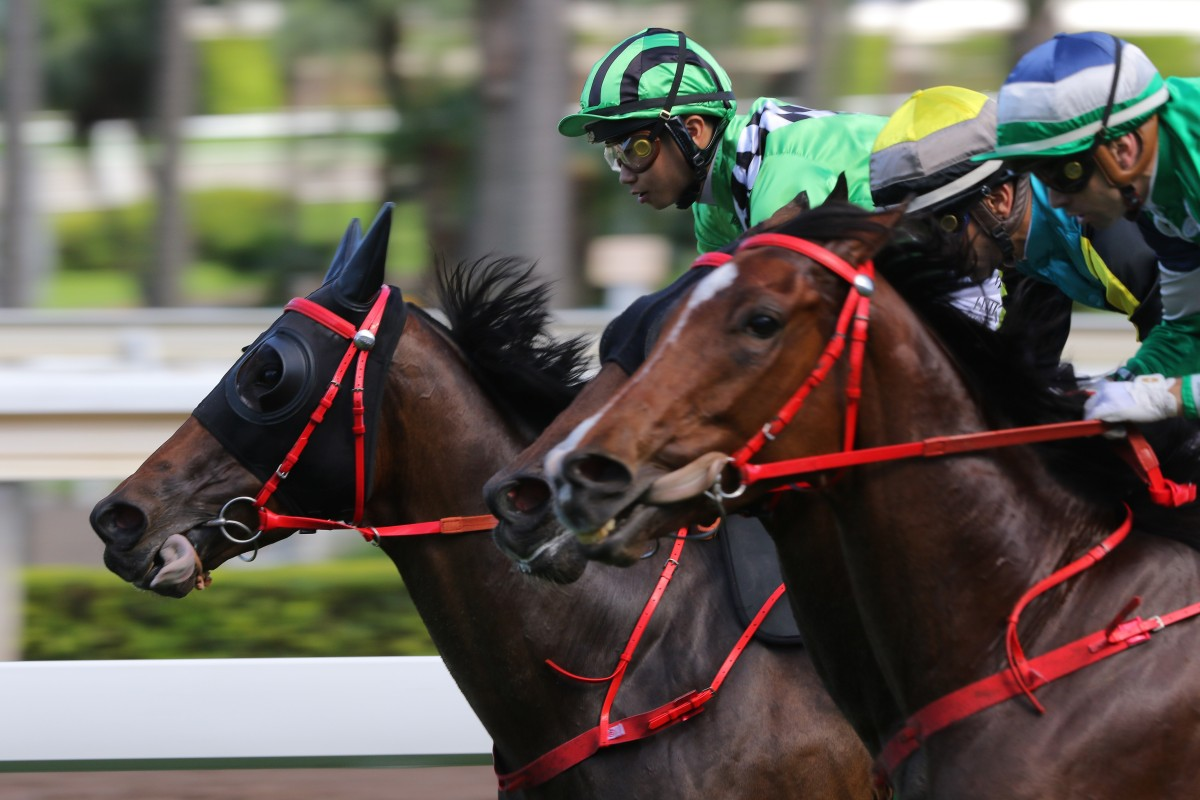 Dylan Mo drives Green Energy to victory at Sha Tin on Monday. Photos: Kenneth Chan