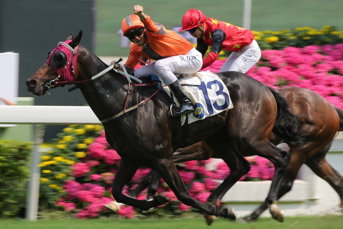 Regan Bayliss salutes after guiding Champion Supreme to victory at Sha Tin in April. Photos: Kenneth Chan