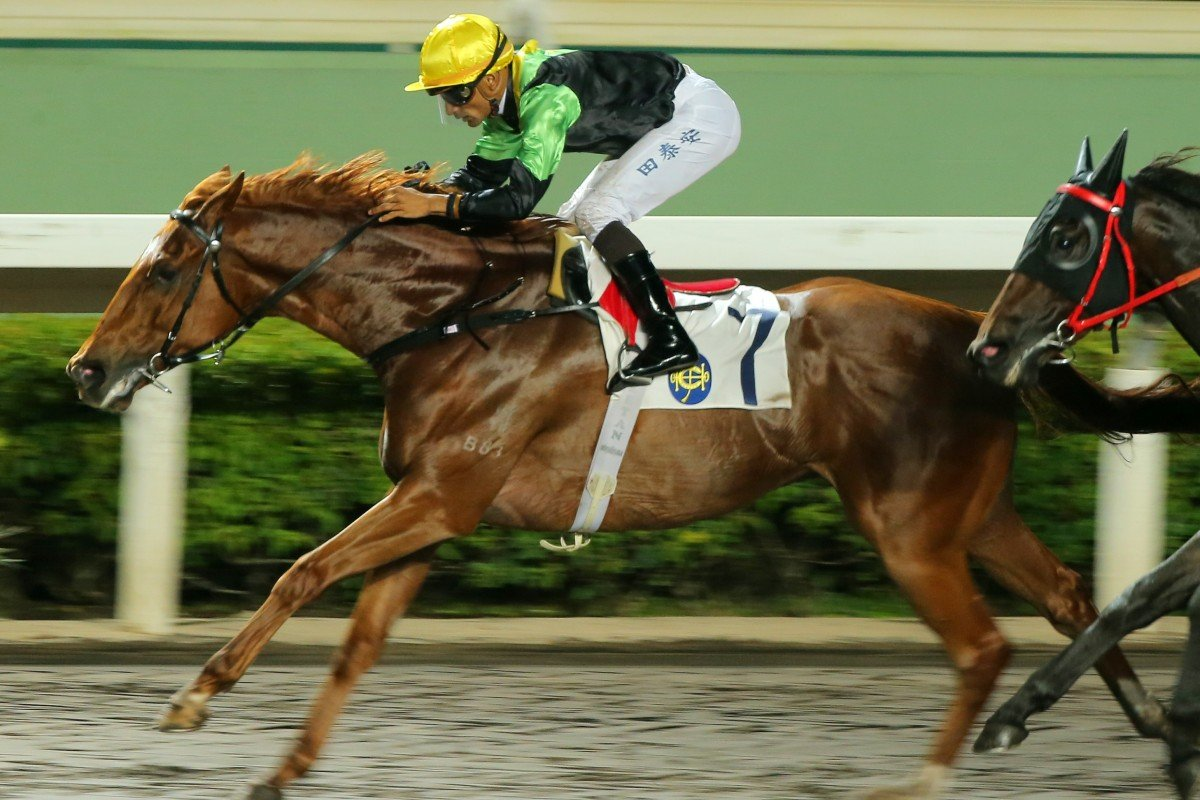 Ugly Warrior wins at Sha Tin in June. Photo: Kenneth Chan