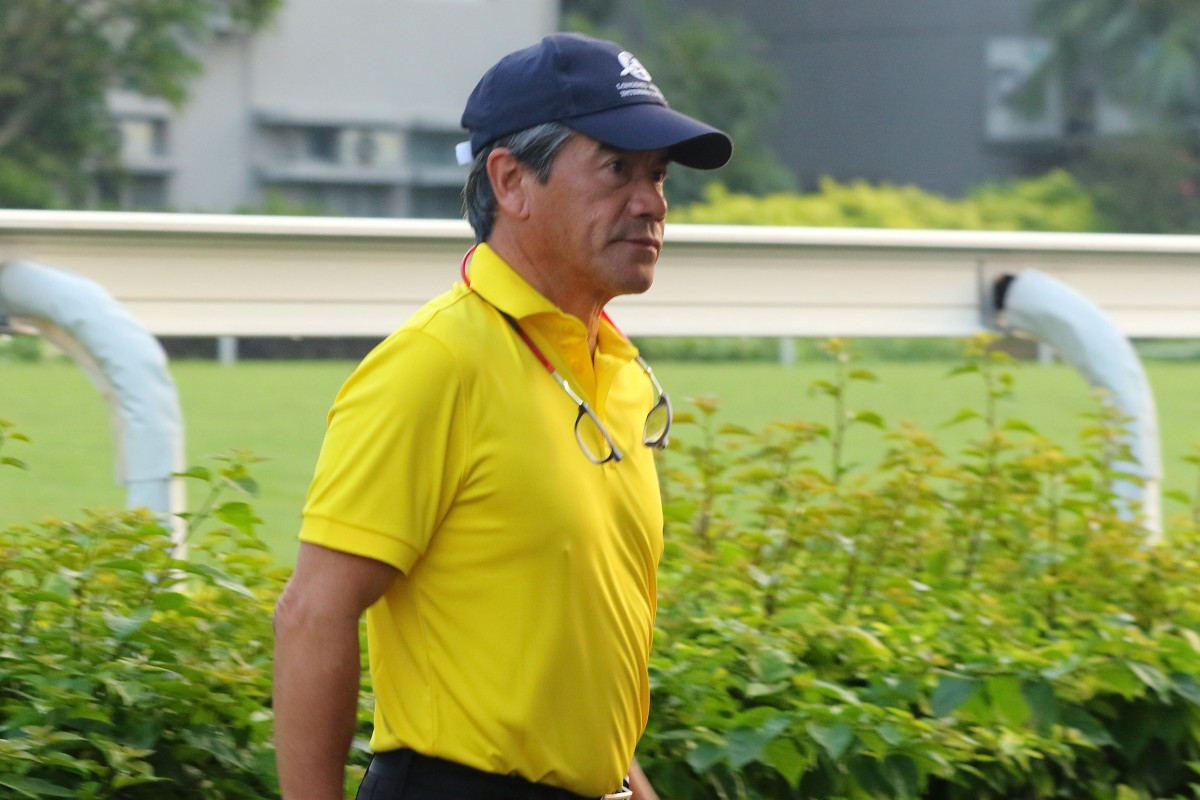 Hong Kong Bet's trainer Tony Cruz at Sha Tin on Thursday morning. Photos: Kenneth Chan
