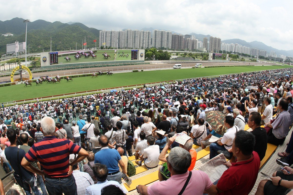 Fans watch the races at Sha Tin. Photo: Kenneth Chan