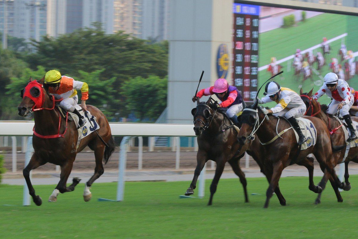 Happy Fun wins the last race Betfair hosted a market on in Hong Kong. Photo: Kenneth Chan