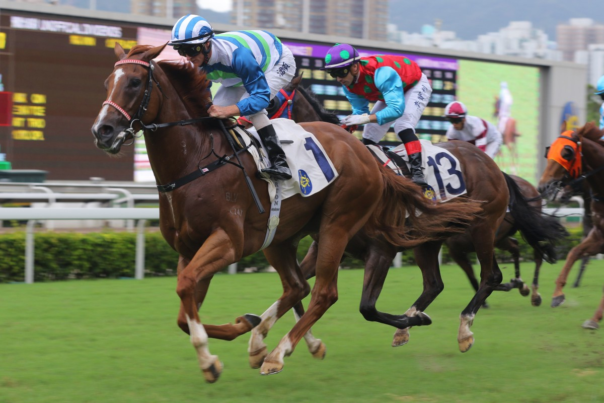 Voyage Warrior salutes at Sha Tin in June. Photos: Kenneth Chan