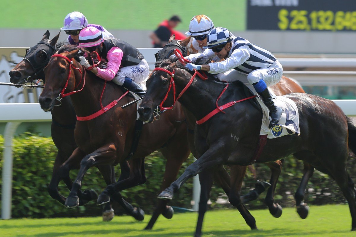 Seasons Bloom (outside) runs over the top of a bunched finish to win at Sha Tin on Sunday. Photos: Kenneth Chan