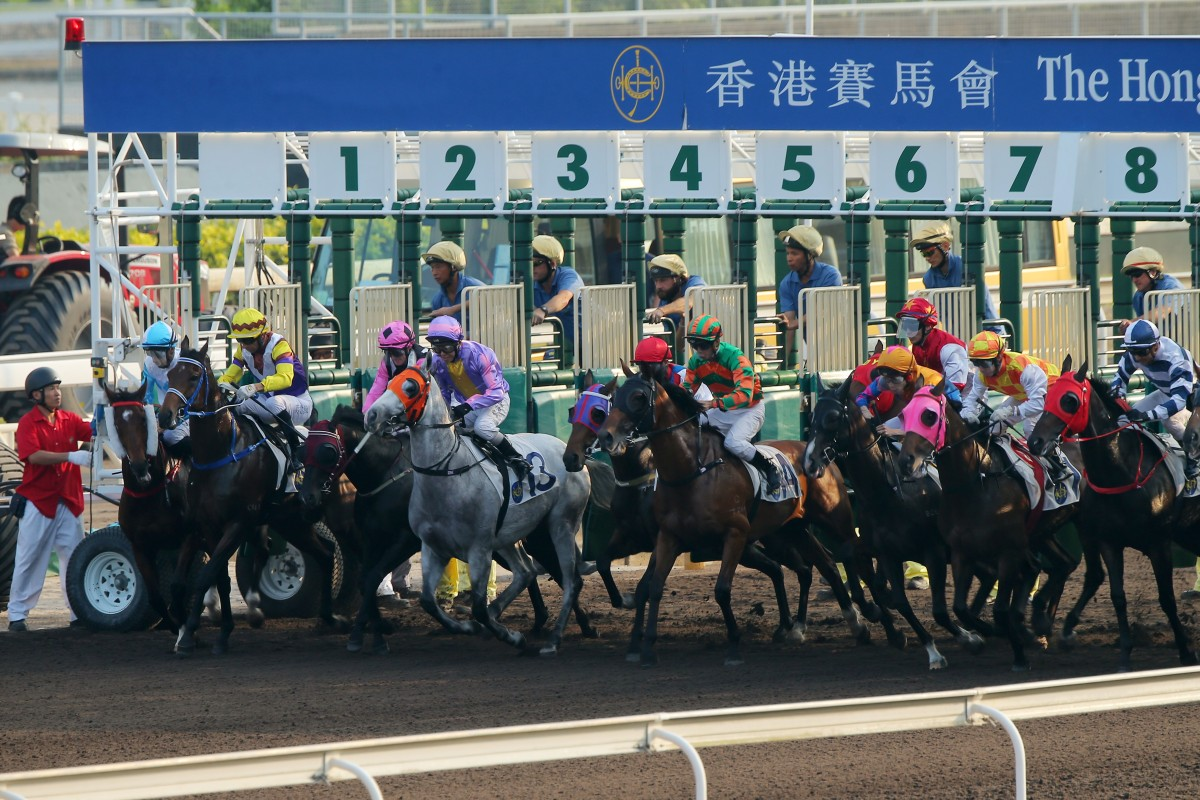 Horses jump from the gates during one of the dirt races at Sha Tin on Sunday. Photos: Kenneth Chan