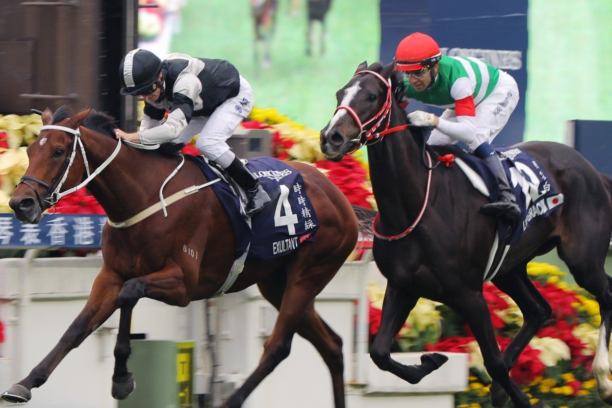 Exultant (inside) edges out Lys Gracieux to win the Group One Hong Kong Vase (2,400m) in December. Photos: Kenneth Chan