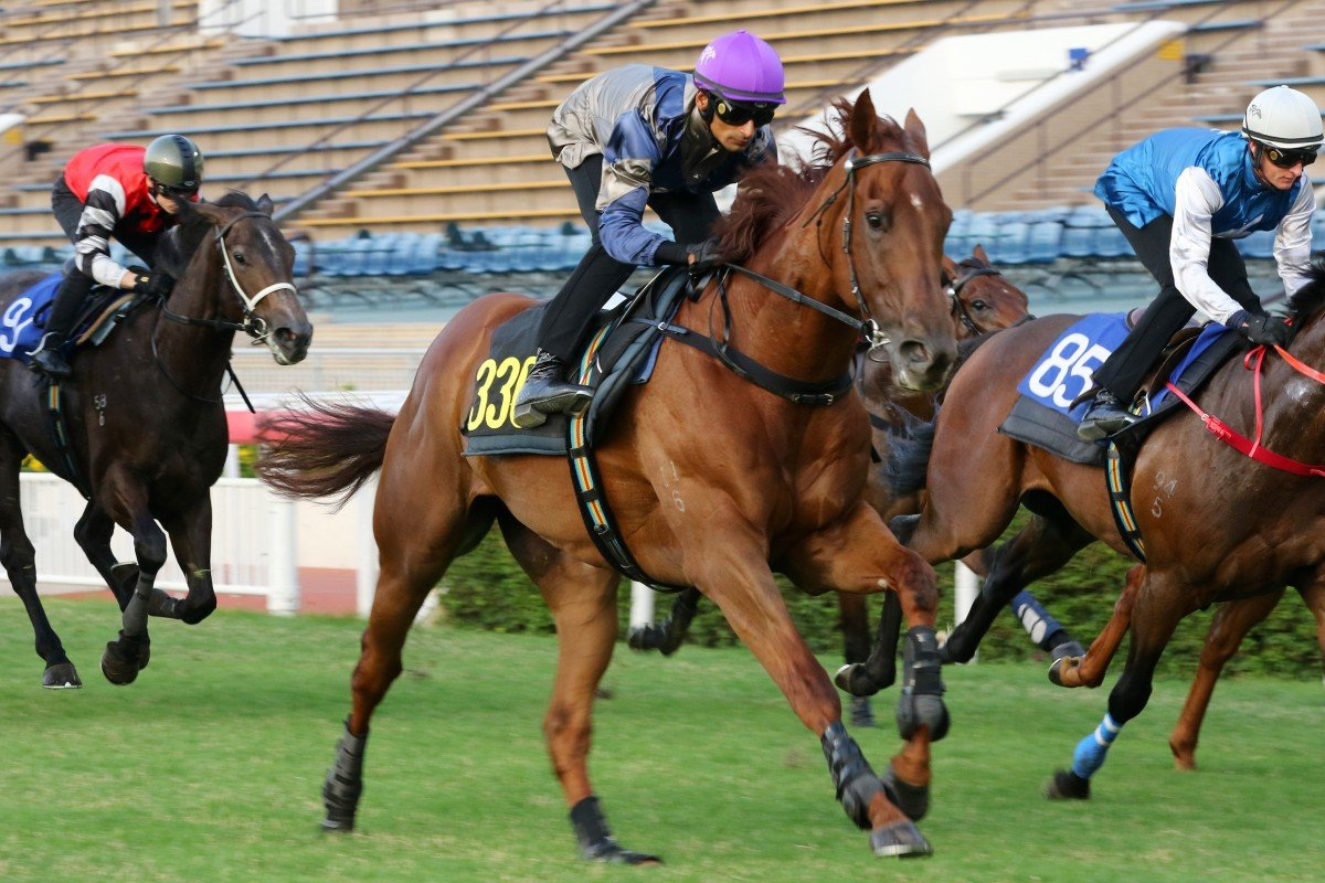 Karis Teetan partners Aethero to victory in a trial on Tuesday morning. Photos: Kenneth Chan