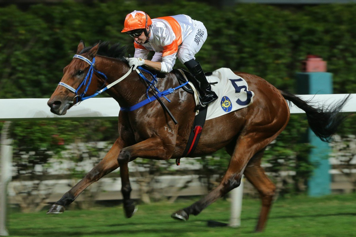 Neil Callan and Kiram put paid to their rivals at Happy Valley on Wednesday night. Photos: Kenneth Chan