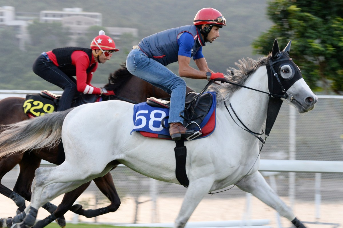 The Weatherman gallops at Sha Tin. Photos: Kenneth Chan