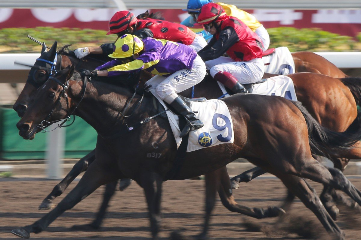 Alex Lai (outside) runs over the top of a bunched field to win at Sha Tin on Saturday. Photos: Kenneth Chan