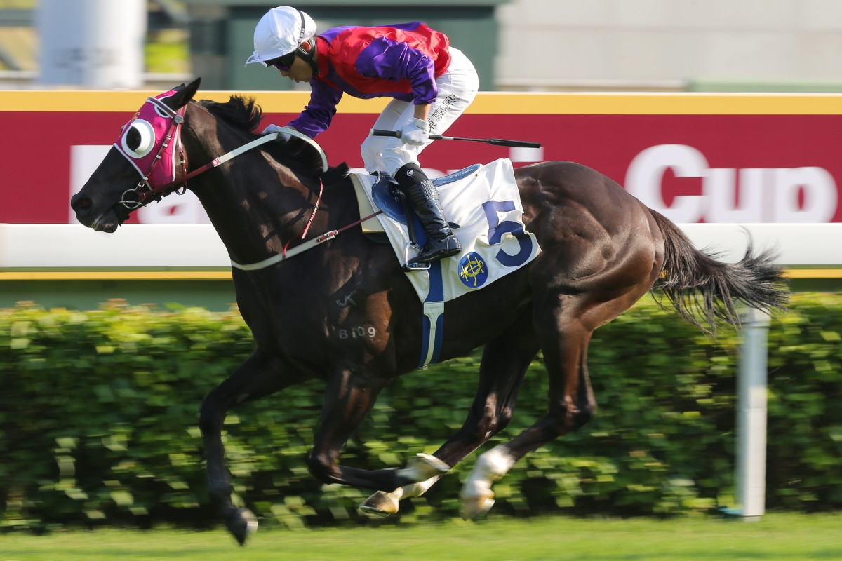 Alfred Chan pilots Encouraging to a track record-breaking win at Sha Tin on Saturday. Photos: Kenneth Chan