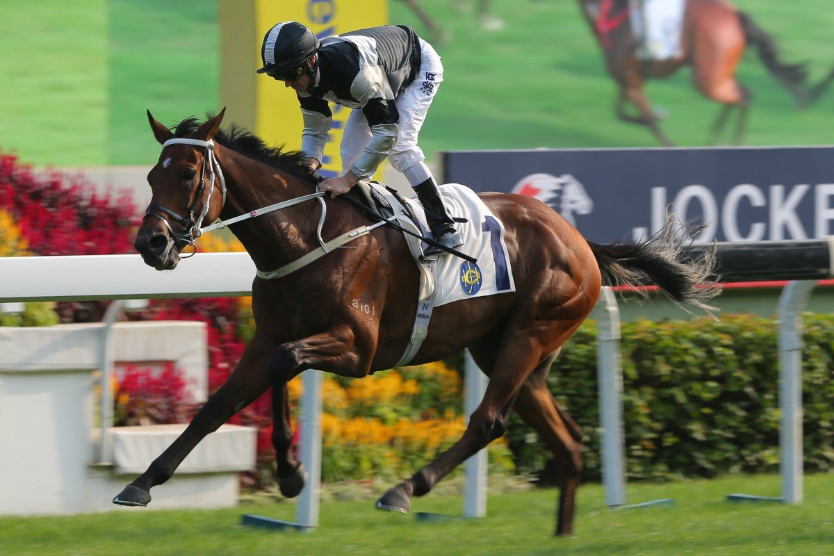 Exultant wins the Group Two Jockey Club Cup under Zac Purton at Sha Tin. Photos: Kenneth Chan