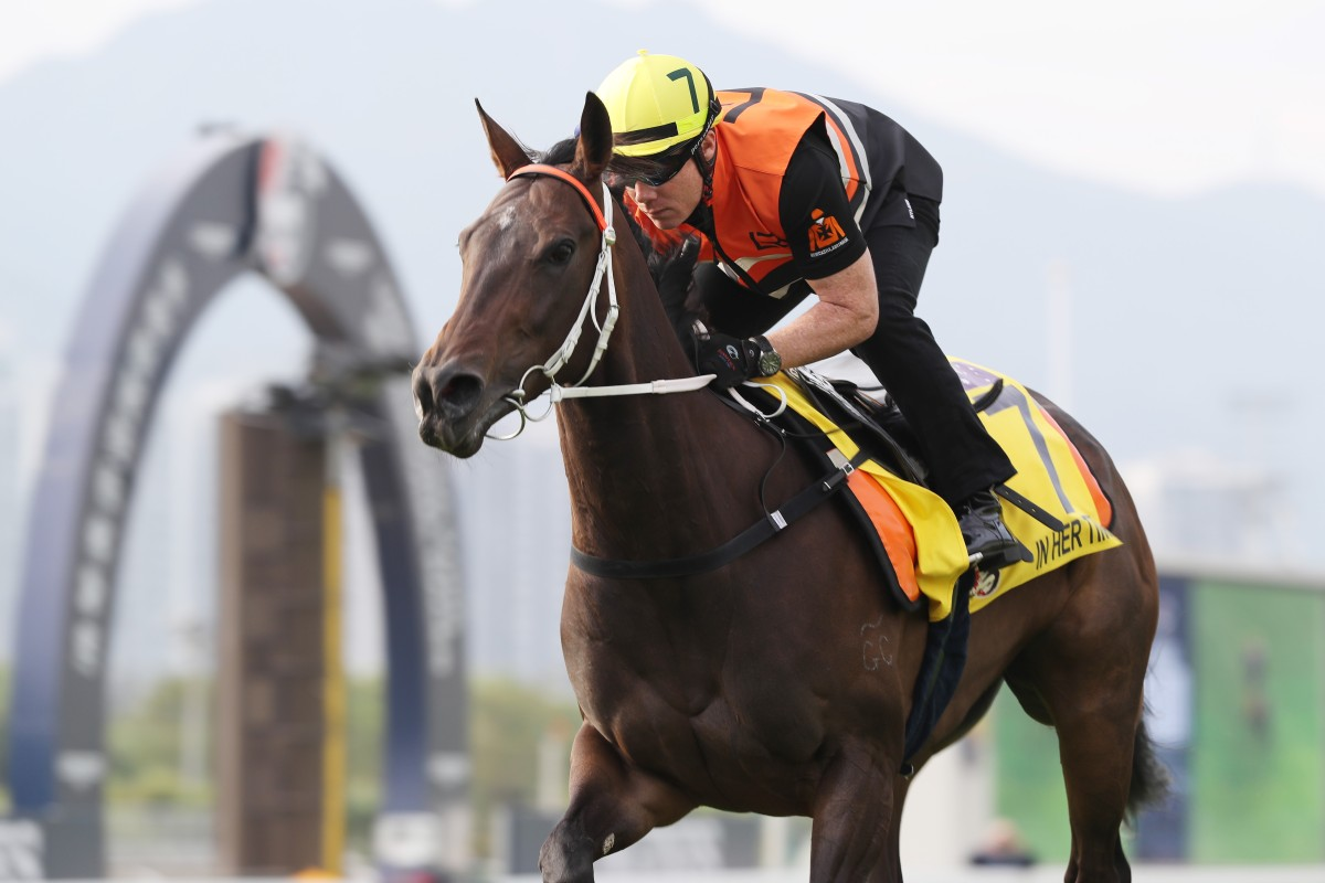 Australian sprinter In Her Time gallops on the Sha Tin turf on Friday morning. Photos: Kenneth Chan