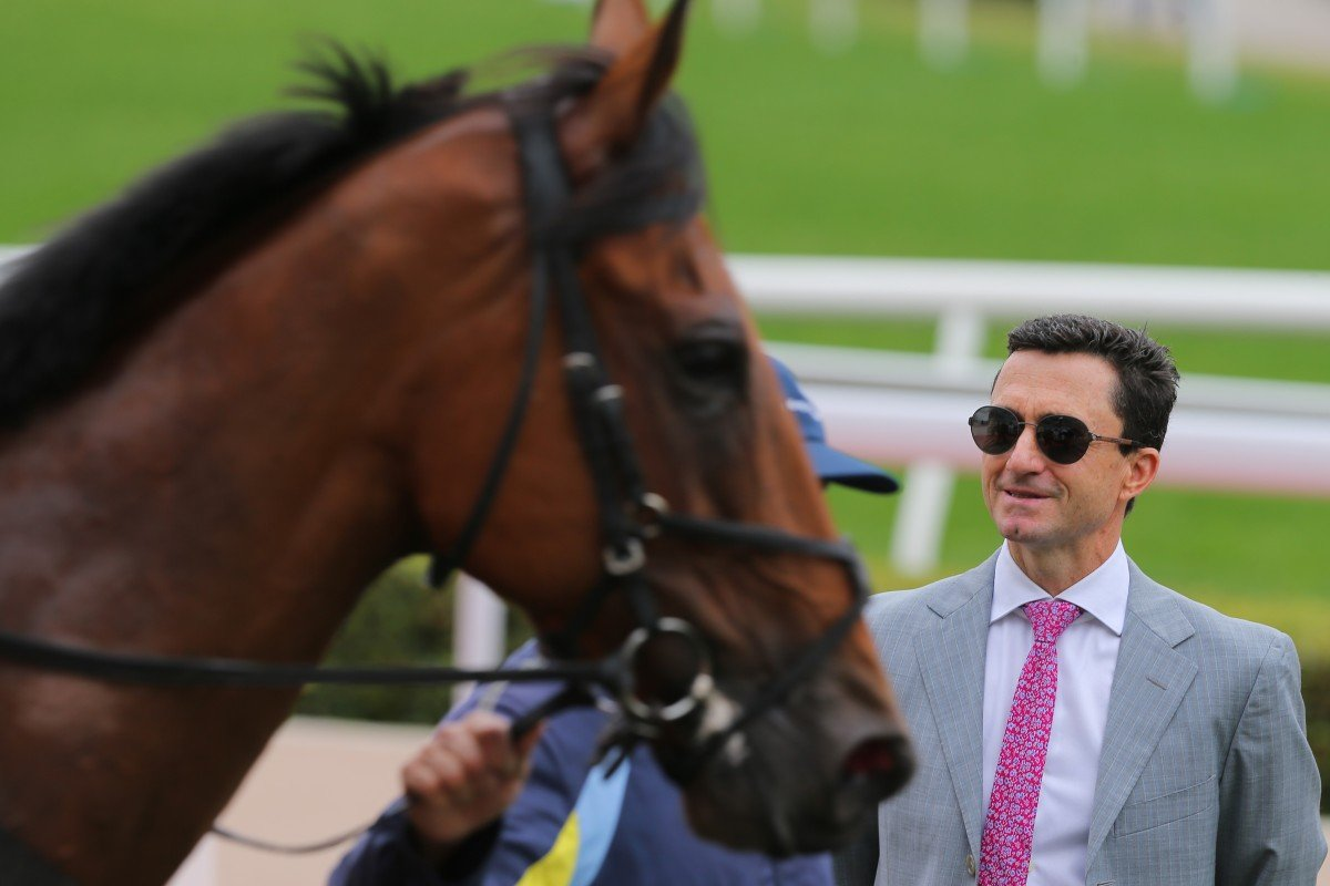 Douglas Whyte inspects debut winner Xponential at Sha Tin on Saturday. Photos: Kenneth Chan
