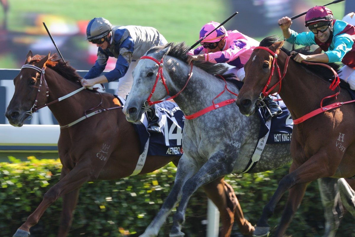 Aethero (inside) runs third in the Group One Hong Kong Sprint. Photos: Kenneth Chan