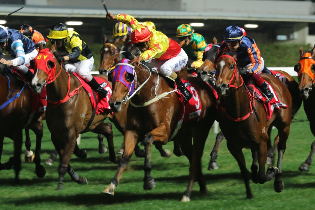 Horses fight out the finish at Happy Valley last month. Photos: Kenneth Chan