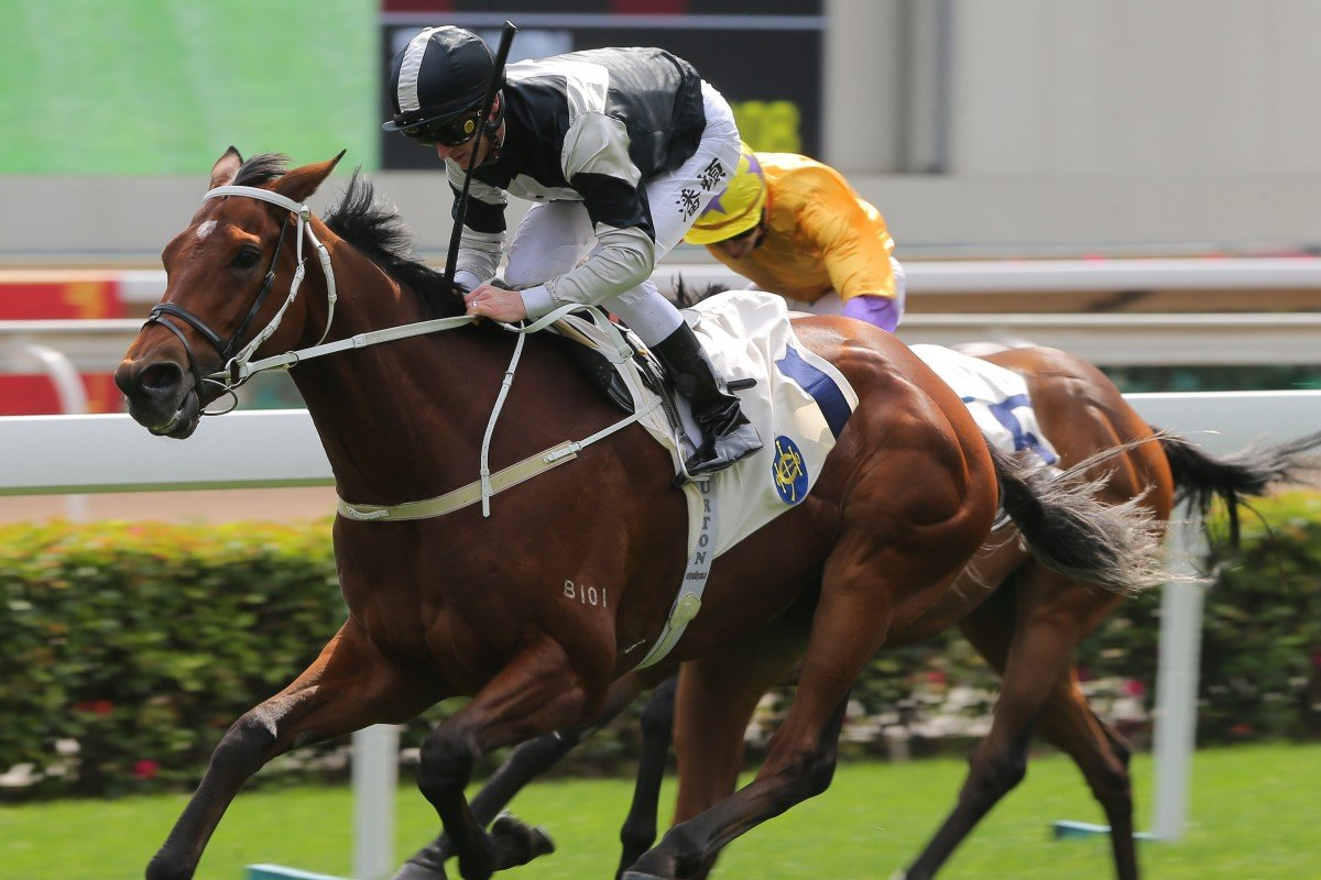 Zac Purton guides Exultant to victory at Sha Tin on Monday. Photos: Kenneth Chan