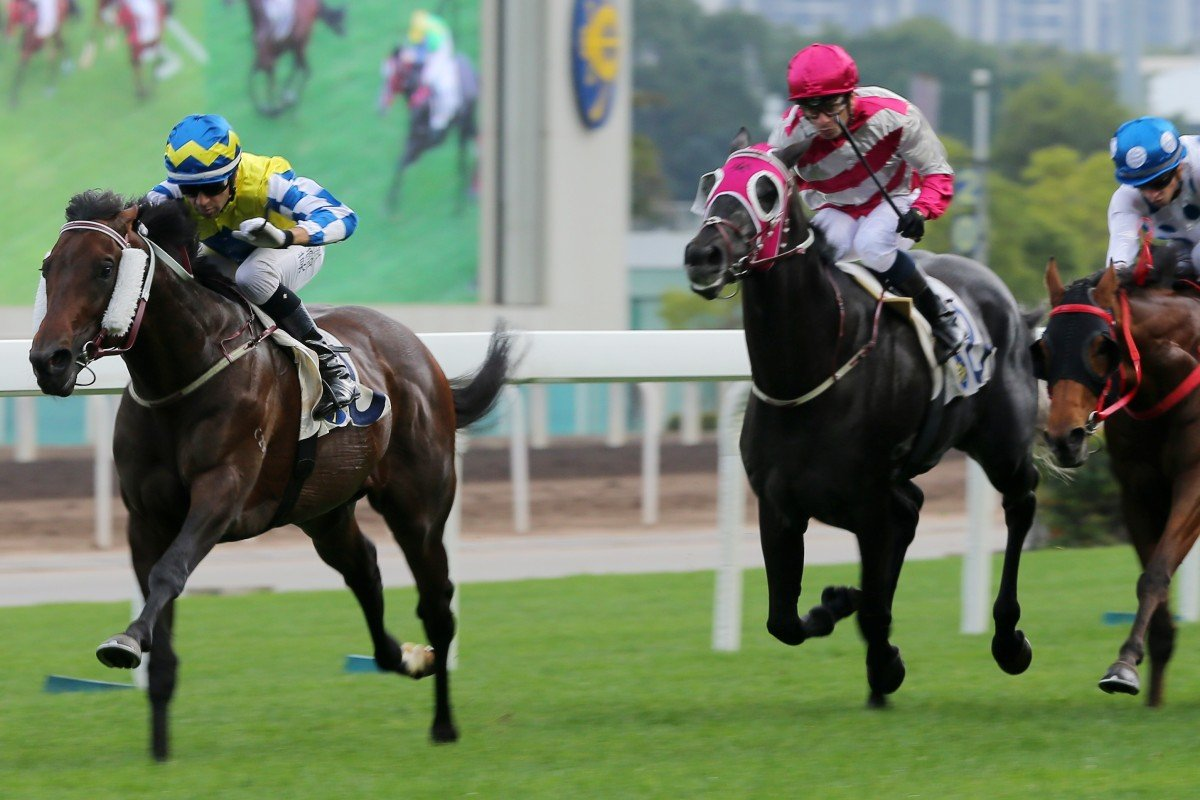 Enjoying (pink and grey silks) runs third at Sha Tin on January 5. Photos: