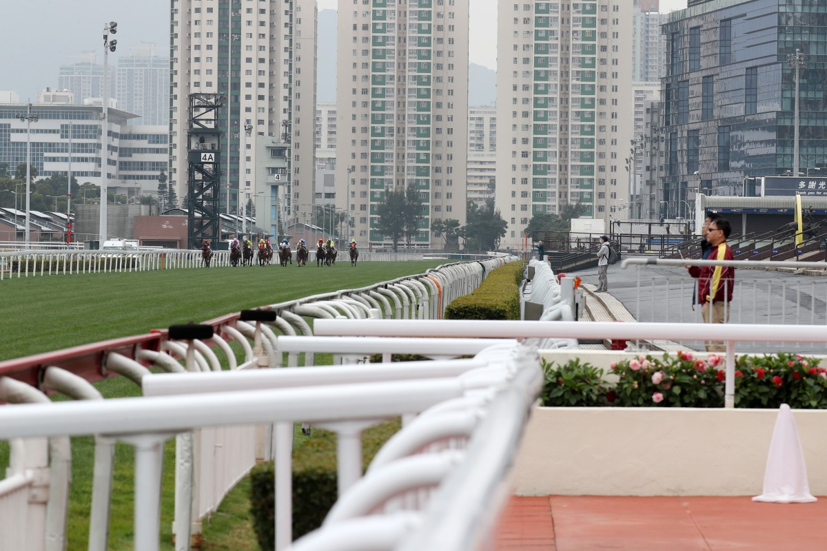 A smattering of punters watch on at Sha Tin on Sunday. Photo: Kenneth Chan