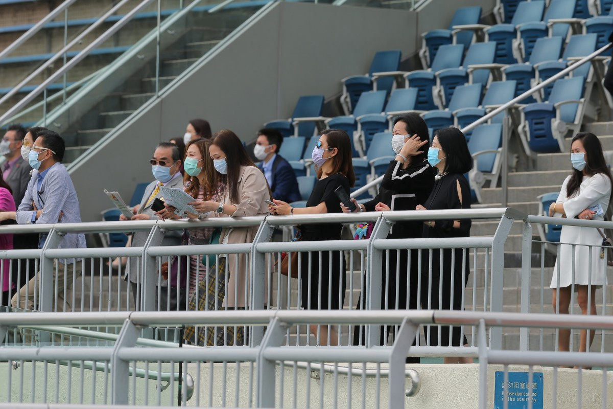 A handful of owners watch on at Sha Tin earlier this month. Photos: Kenneth Chan