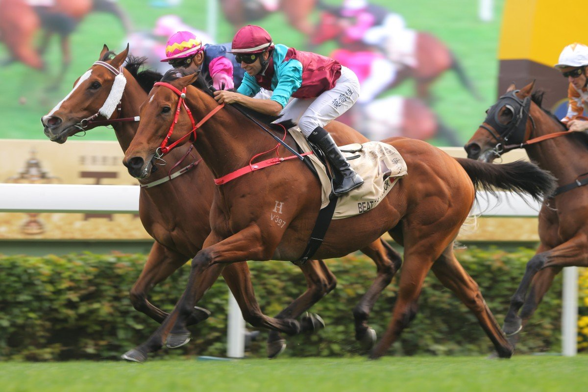 Beat The Clock wins the Centenary Sprint Cup in January. Photos: Kenneth Chan