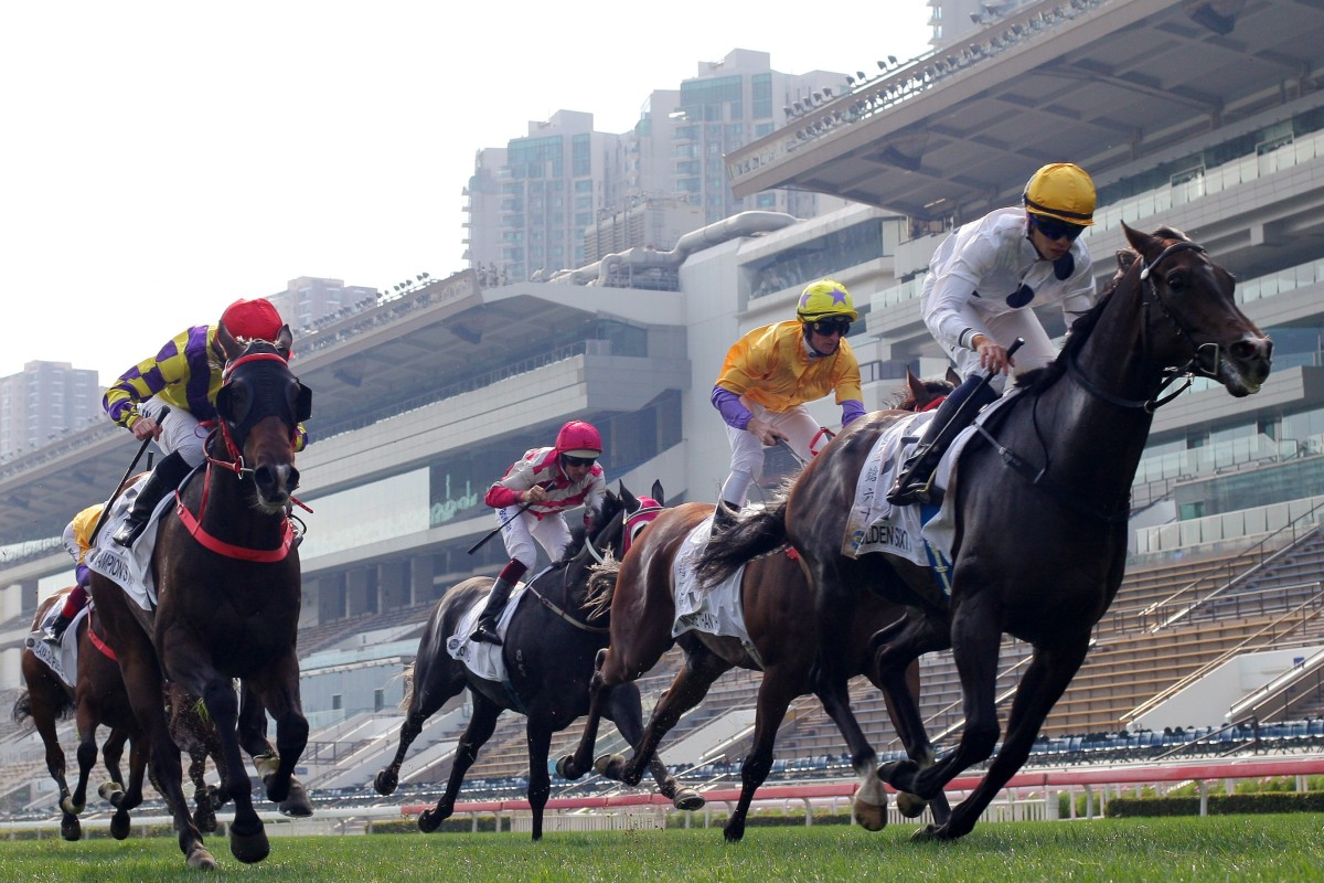 Golden Sixty, Champion's Way and More Than This battle out the Classic Cup last month. Photos: Kenneth Chan