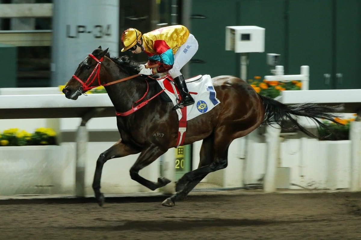 Dubais $12-million World Cup horse race cancelled