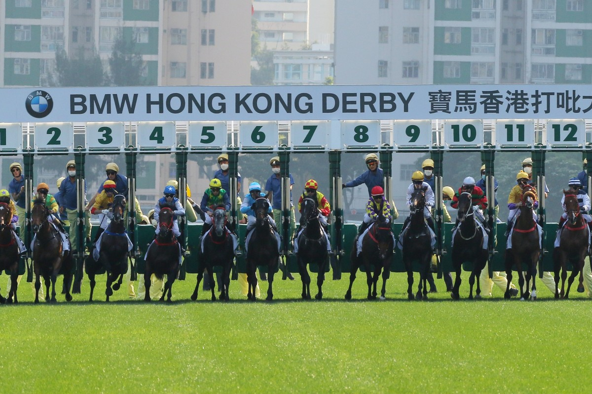 Horses jump in the Hong Kong Derby at Sha Tin last week. Photos: Kenneth Chan