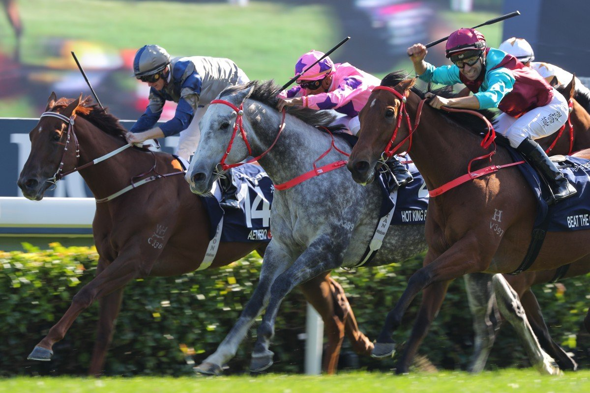 Aethero (inside) is narrowly beaten in the Hong Kong Sprint by Hot King Prawn and Beat The Clock. Photos: Kenneth Chan