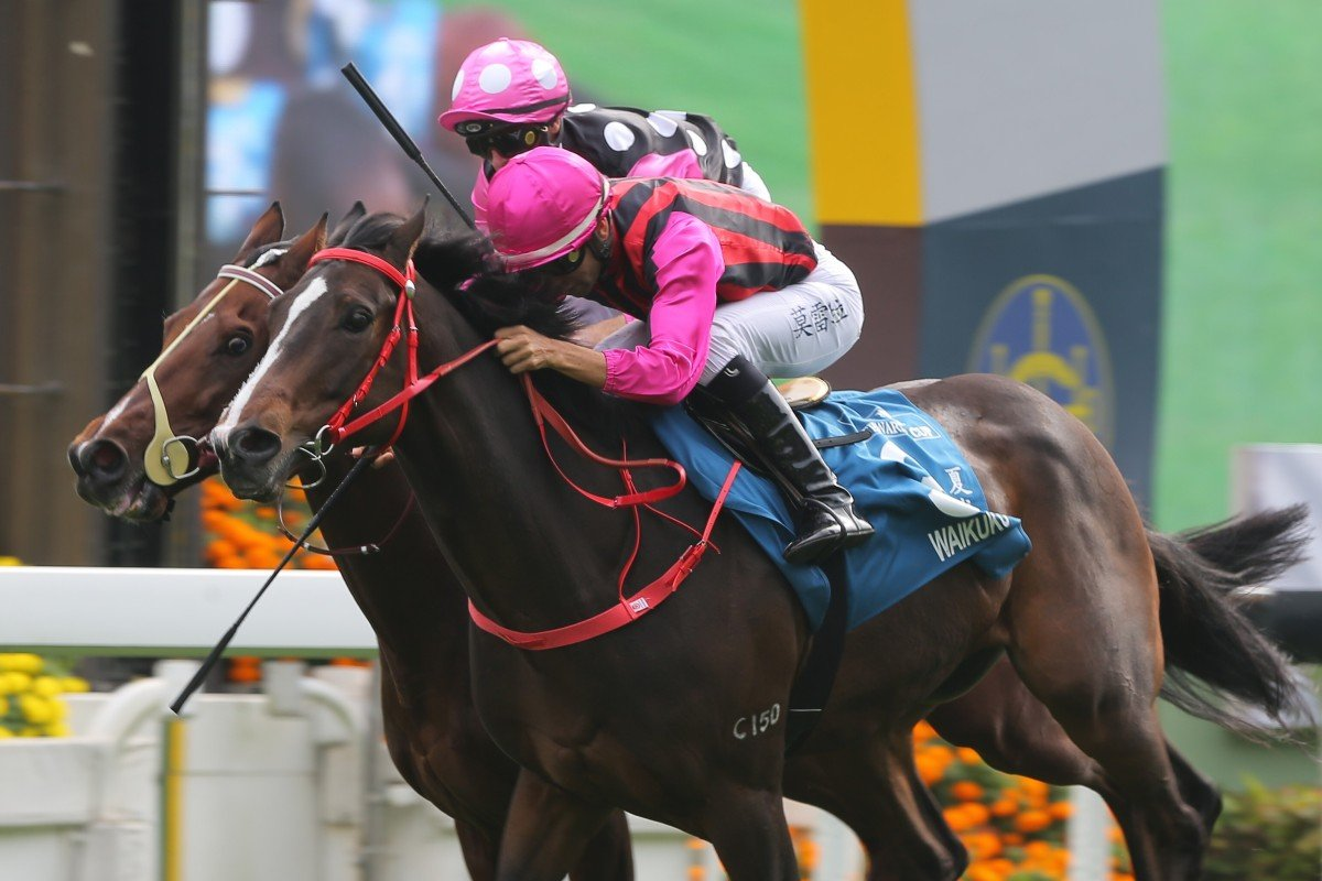 Waikuku gets the better of Beauty Generation during the Stewards' Cup this season. Photos: Kenneth Chan