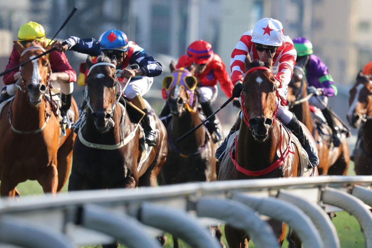 Horses race up the straight at Sha Tin. Photos: Kenneth Chan