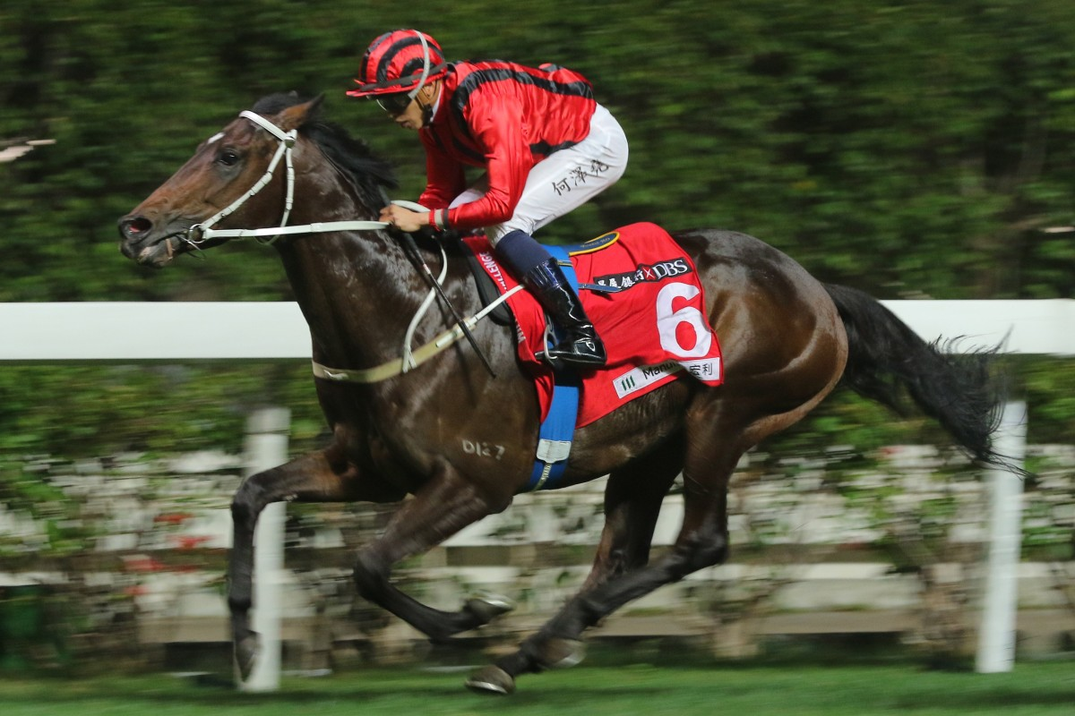 Private Secretary salutes at Happy Valley in December. Photos: Kenneth Chan