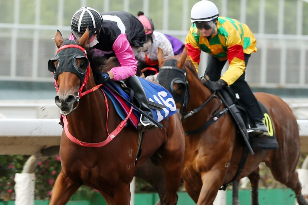Heza Beauty trials at Sha Tin earlier this month. Photos: Kenneth Chan