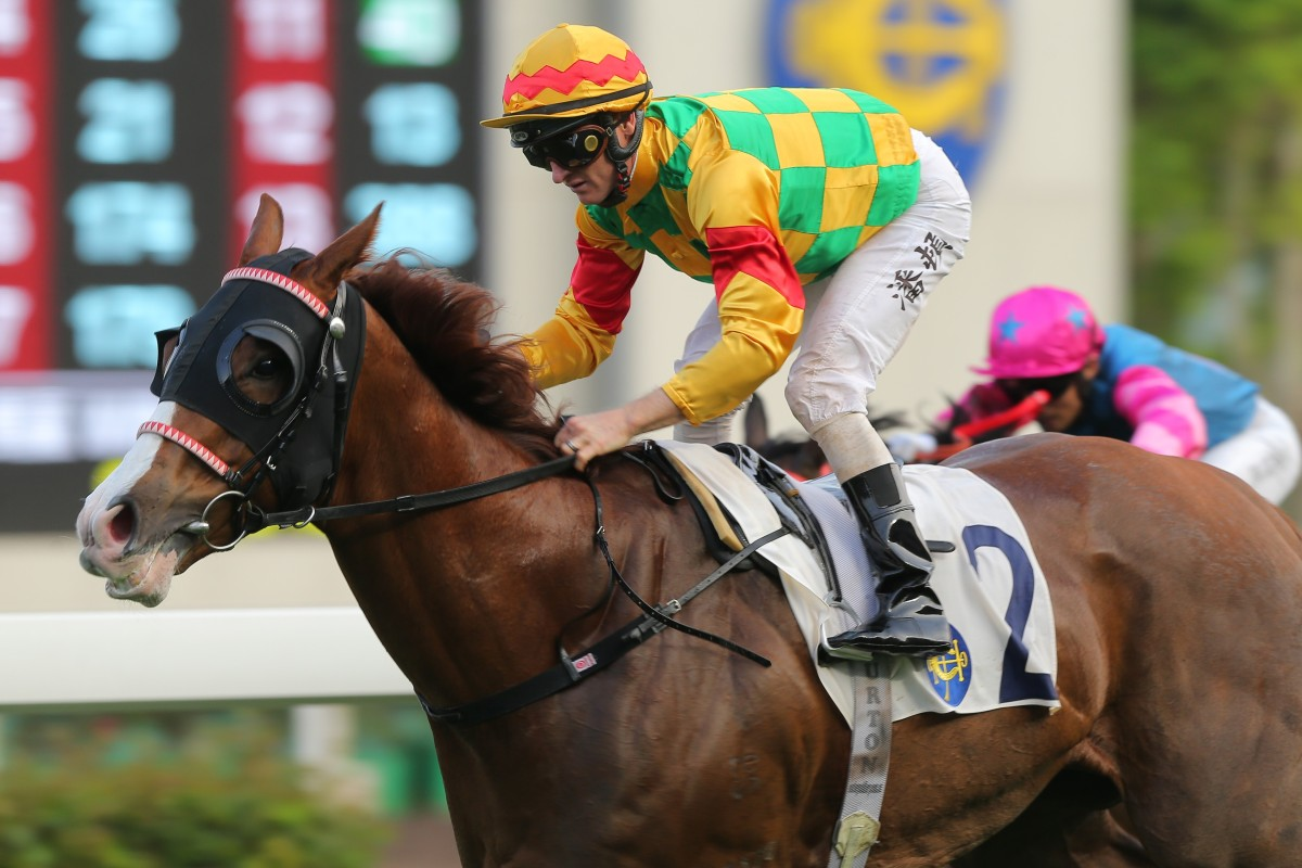 Zac Purton guides Mighty Giant to victory at Sha Tin on Sunday. Photos: Kenneth Chan