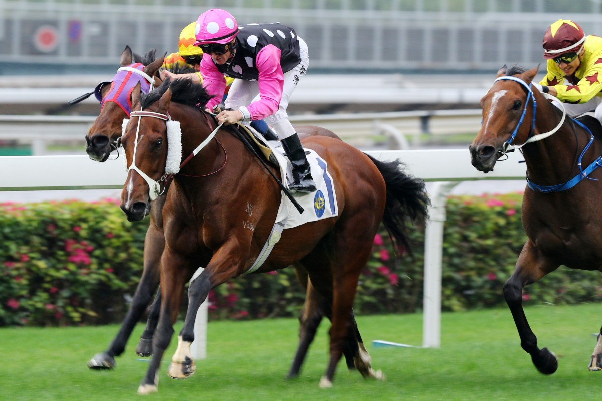 Beauty Generation wins the Chairman's Trophy at Sha Tin earlier this month. Photos: Kenneth Chan