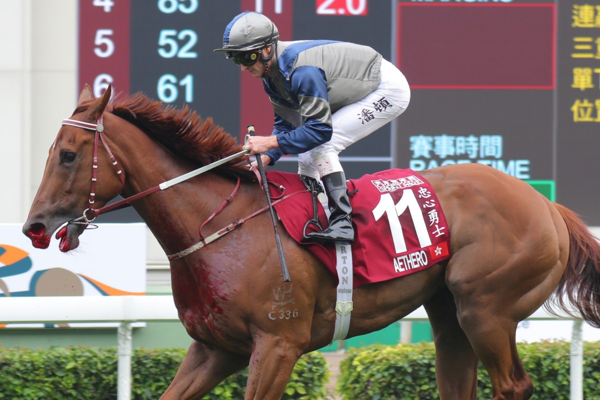 Zac Purton pulls up Aethero after he bled badly in the Group One Chairman's Sprint Prize at Sha Tin. Photos: Kenneth Chan
