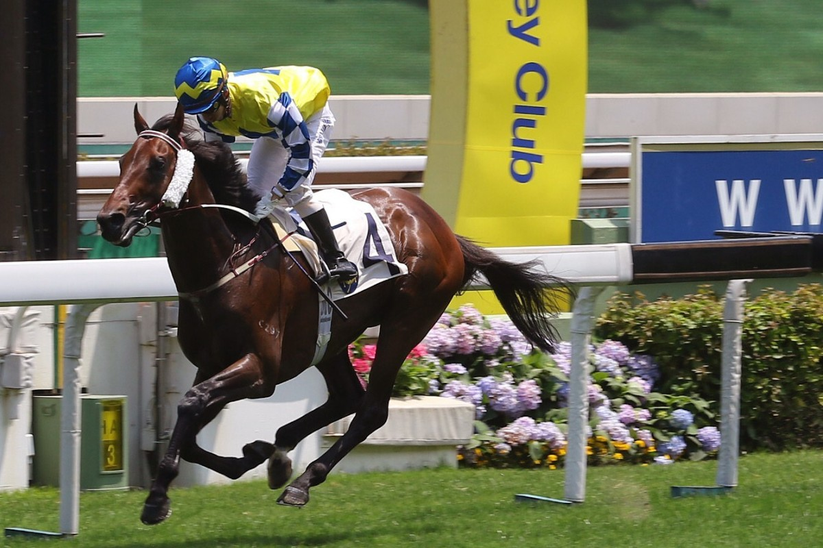 Chefano coasts home to win the Queen Mother Memorial Cup at Sha Tin on Sunday. Photos: Kenneth Chan